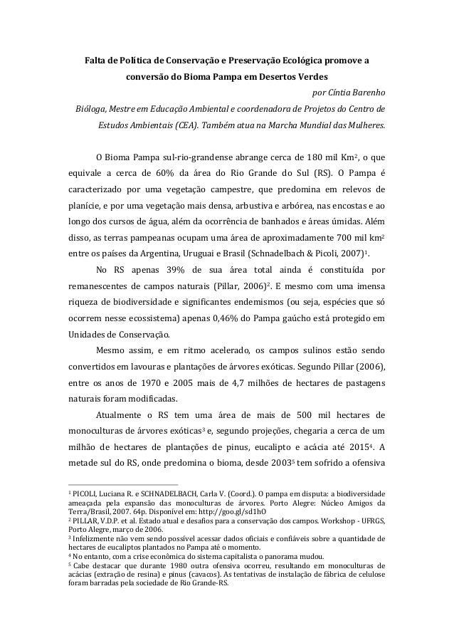 Falta de política de conservação e preservação ambiental promove a conversão do bioma pampa em desertos verdes cintiabarenho