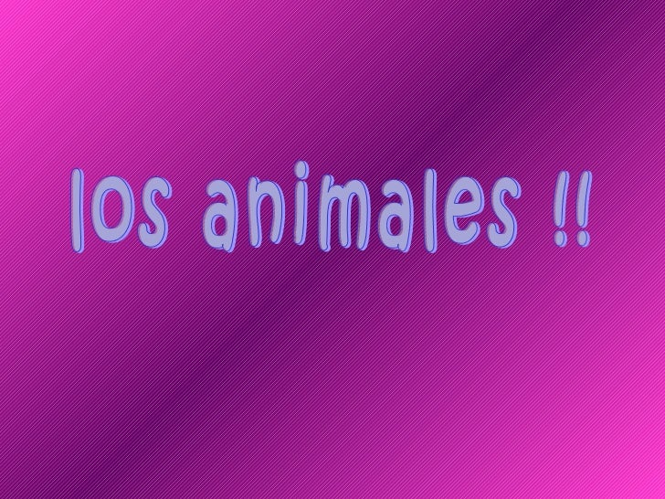 Diversos Animales!