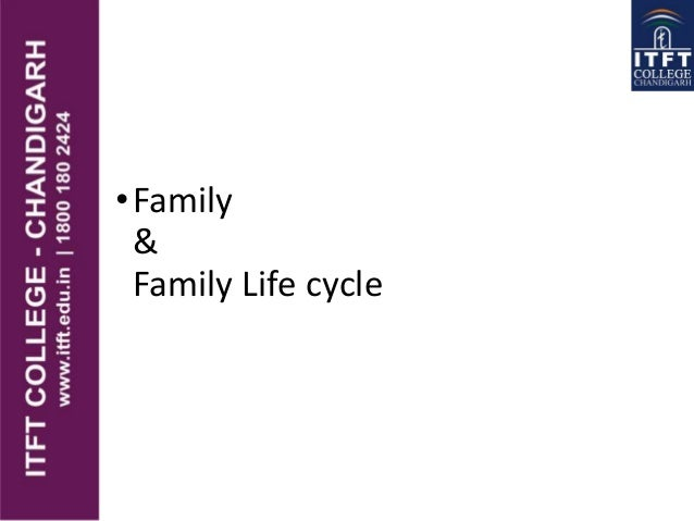 •Family & Family Life cycle
