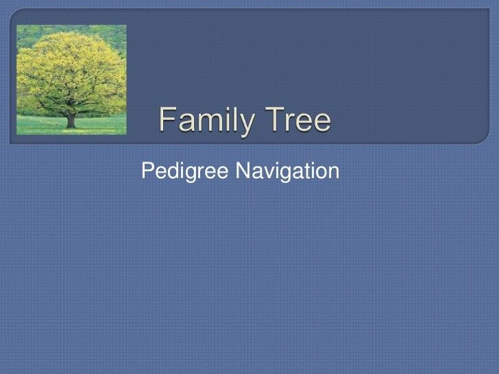 Family tree   navigation