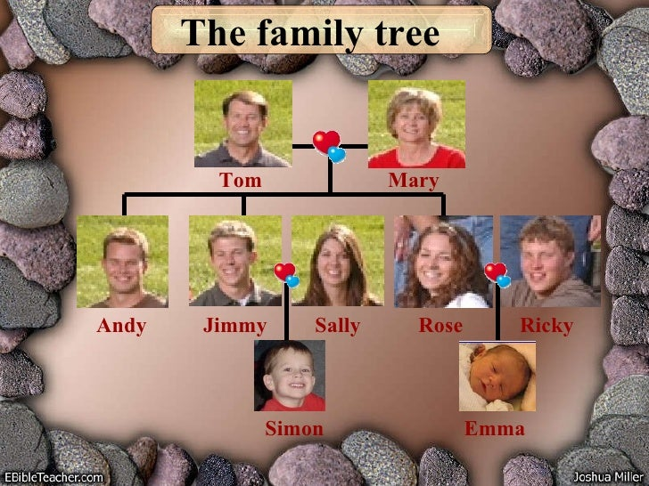 The family tree Tom Mary Rose Ricky Jimmy Sally Andy Emma Simon