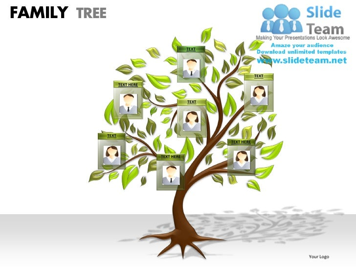 free family tree chart template for powerpoint 2007 screen shot