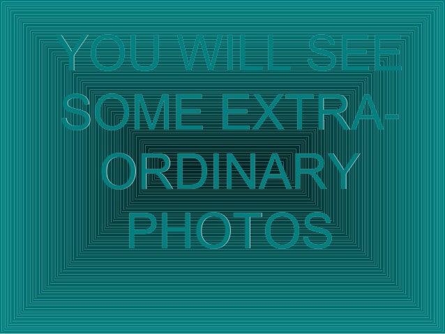 Fantastic photos