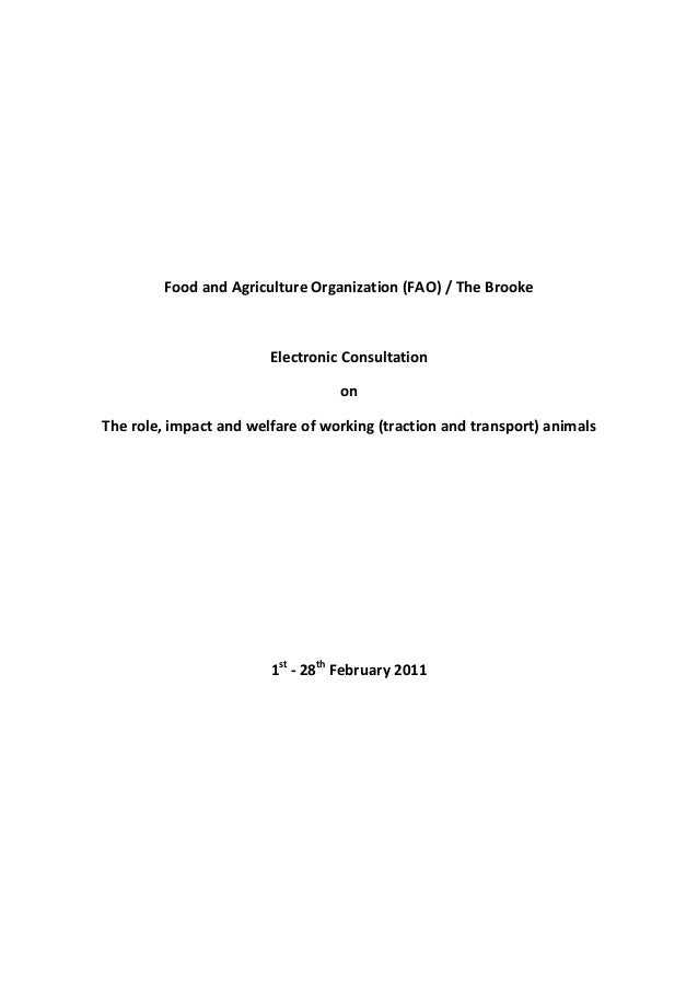 FAO-the Brooke E-consultation on Working Animals: Final Report