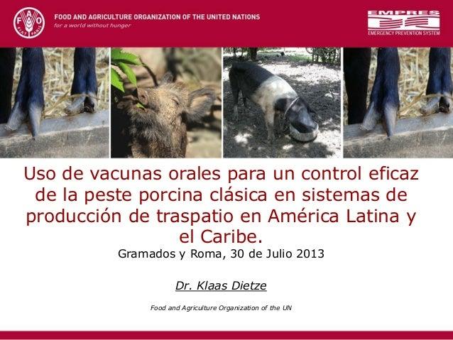 Uso de vacunas orales para un control eficaz de la peste porcina clásica en sistemas de producción de traspatio en América Latina y el Caribe
