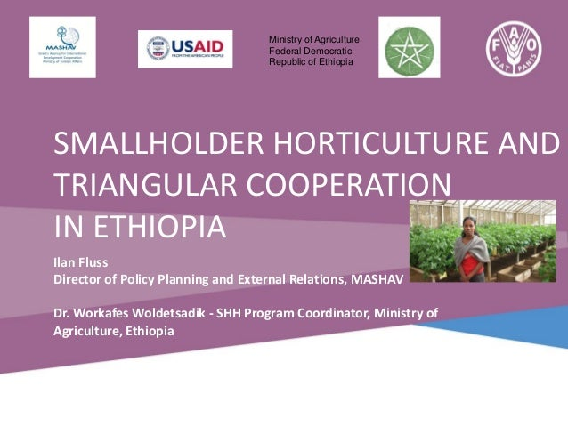 Ministry of Agriculture Federal Democratic Republic of Ethiopia  SMALLHOLDER HORTICULTURE AND TRIANGULAR COOPERATION IN ET...