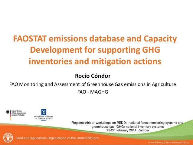 FAOSTAT emissions database and Capacity Development for supporting GHG inventories and mitigation actions Regional African...
