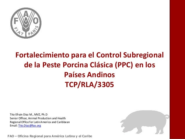 Fortalecimiento para el Control Subregional de la Peste Porcina Clásica (PPC) en los Países Andinos TCP/RLA/3305 FAO – Ofi...