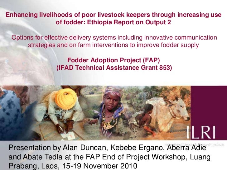 Enhancing livelihoods of poor livestock keepers through increasing use of fodder: Ethiopia Report on Output 2 Options for ...