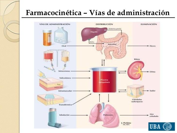imagen de la droga esteroides