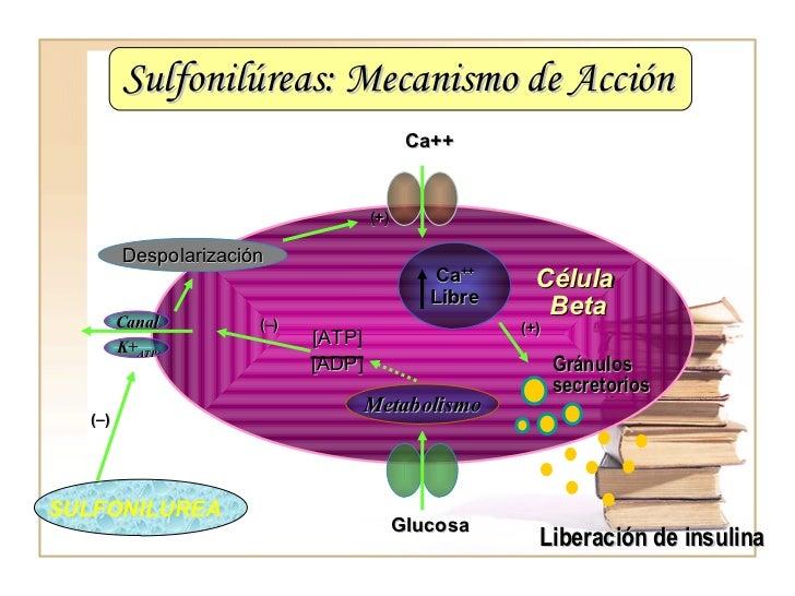 Metformina y glibenclamida pdf - Proventil Inhalator Gutschein
