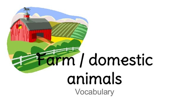 Farm / domestic animals Vocabulary