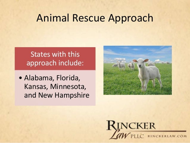 an overview of the animal welfare and animal rights The animal welfare act 2006 is the principal animal welfare legislation under the animal welfare act 2006, powers exist for secondary legislation and codes of practice to be made to promote.