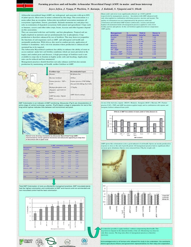 Farming practices and soil health arbsucular mcorrhizal fungi (amf) in maize  and bean intercrop