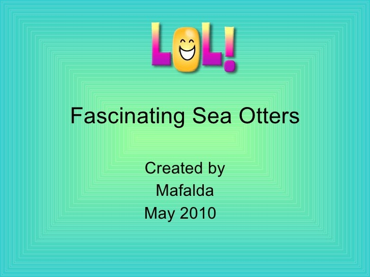 Fascinating sea otters