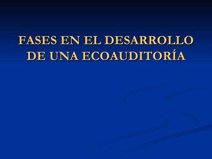 FASES EN EL DESARROLLO  DE UNA ECOAUDITORÍA