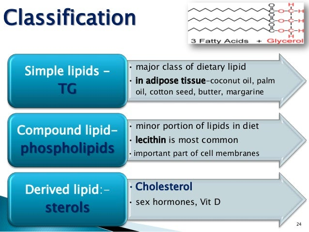 this is a assignment on lipids 1 answer to some of those building blocks are cholesterol, lipids and triglycerides these can be esoteric subjects  in this assignment.