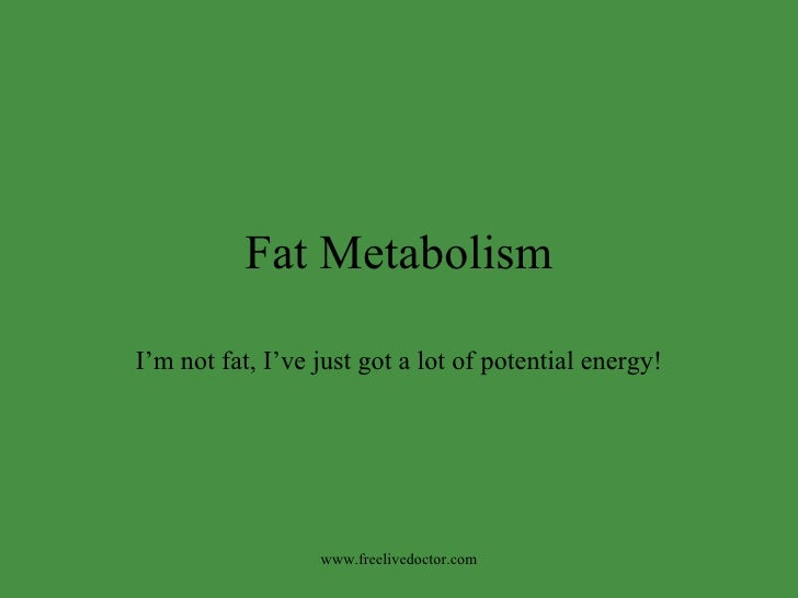 Fat Metabolism I'm not fat, I've just got a lot of potential energy! www.freelivedoctor.com