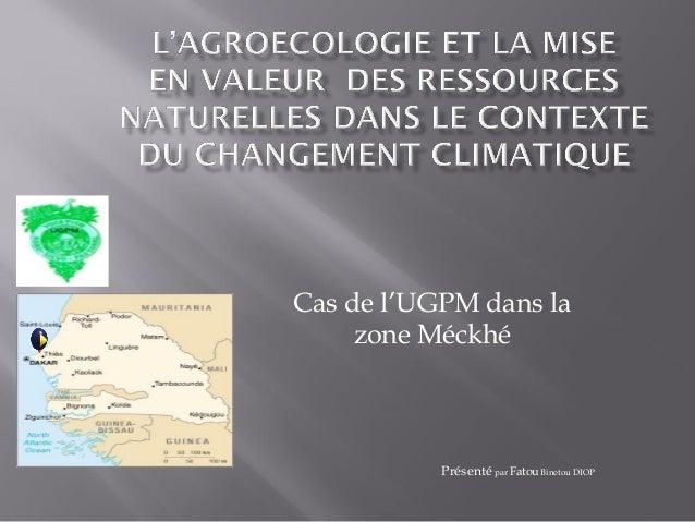 Cas de l'UGPM dans la zone Méckhé Présenté par Fatou Binetou DIOP c