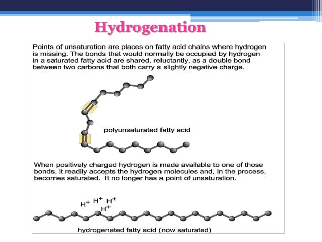 saturated and unsaturated fatty acids pdf
