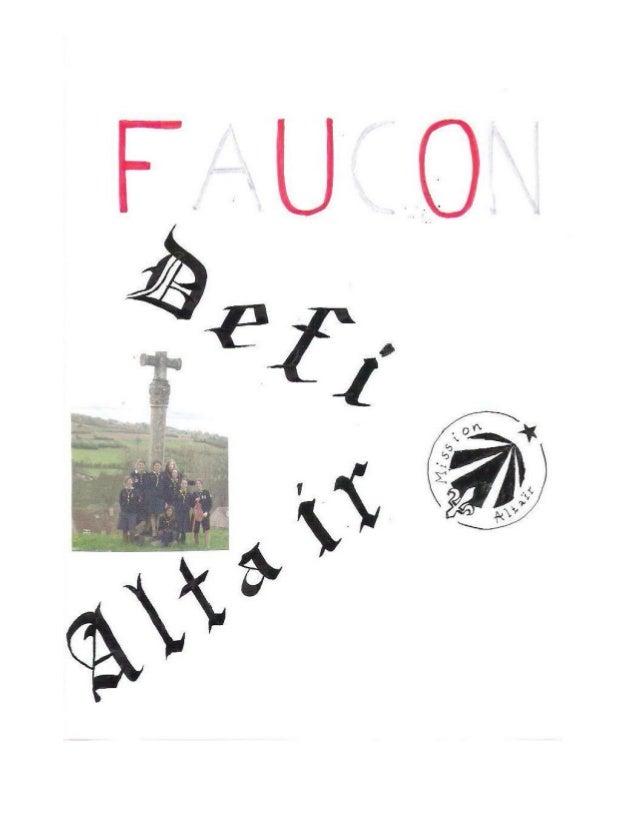 Faucon 2e le chesnay