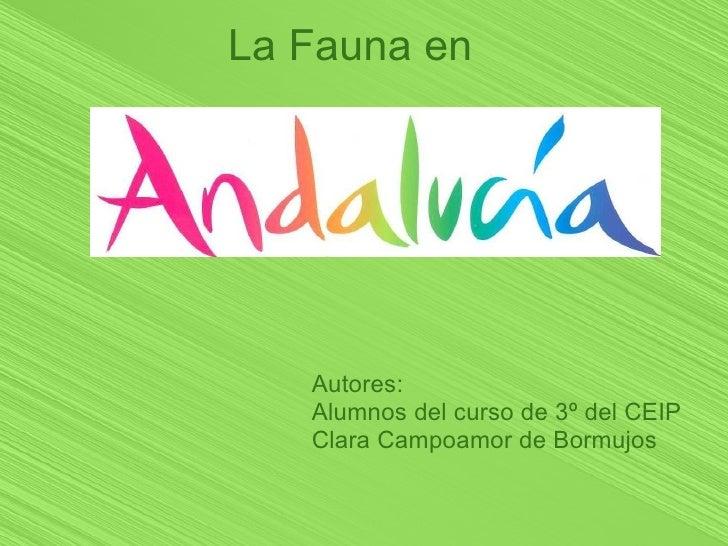 La Fauna en        Autores:    Alumnos del curso de 3º del CEIP    Clara Campoamor de Bormujos