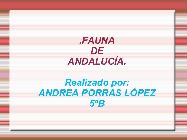 Fauna de Andalucía . Por Andrea Porras López 5ºb