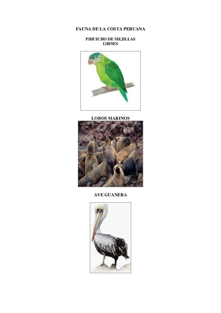 Fauna de la costa peruana
