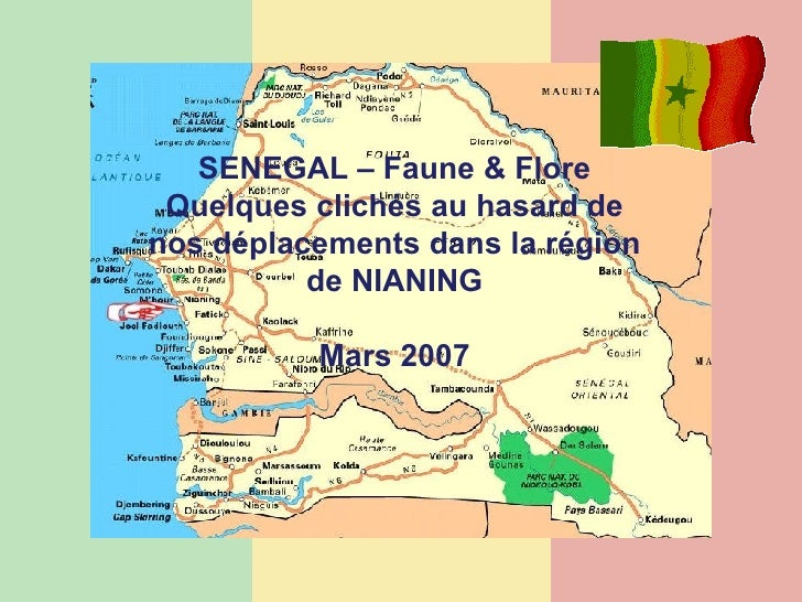 SENEGAL – Faune & Flore Quelques clichés au hasard de nos déplacements dans la région de NIANING Mars 2007