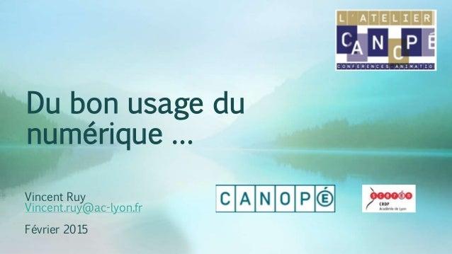 Du bon usage du numérique … Vincent Ruy Vincent.ruy@ac-lyon.fr Février 2015