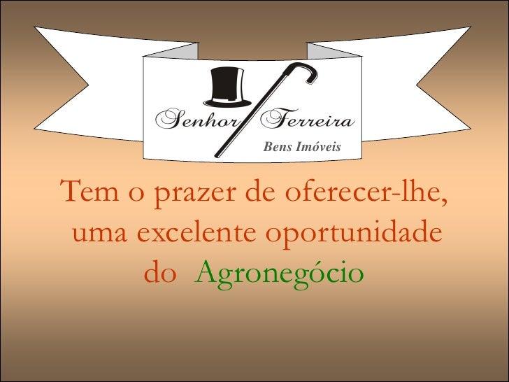Fazenda a venda Minas Gerais-Uberaba, Triângulo Mineiro, 176 hect.,Gado de Elite, Cana