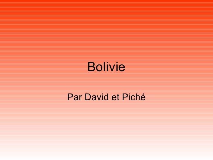 Bolivie Par David et Piché