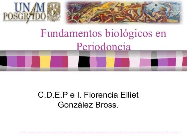 Fundamentos biológicos en Periodoncia C.D.E.P e I. Florencia Elliet González Bross.
