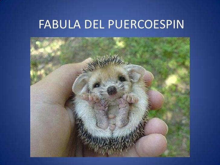 FABULA DEL PUERCOESPIN<br />