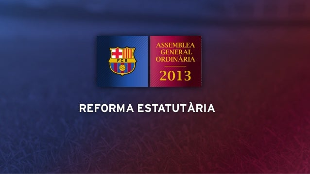 Assemblea 2013 - Reforma estatutària
