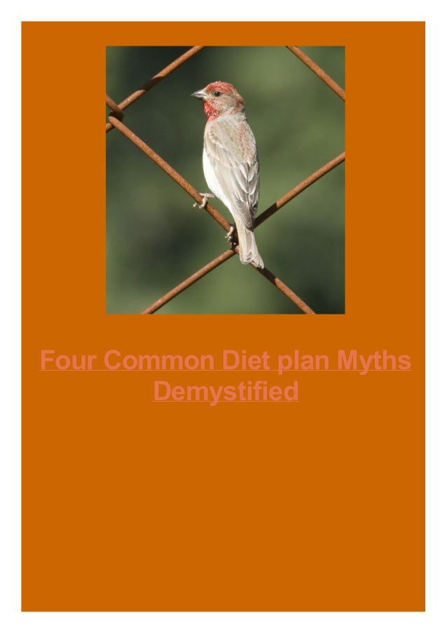 Four Common Diet plan Myths Demystified