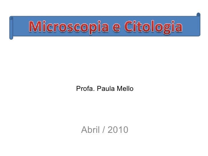 Abril / 2010 Profa. Paula Mello