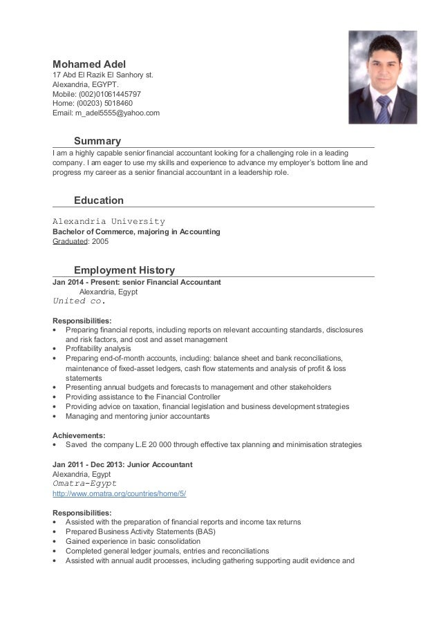 Senior Financial Accountant Cv