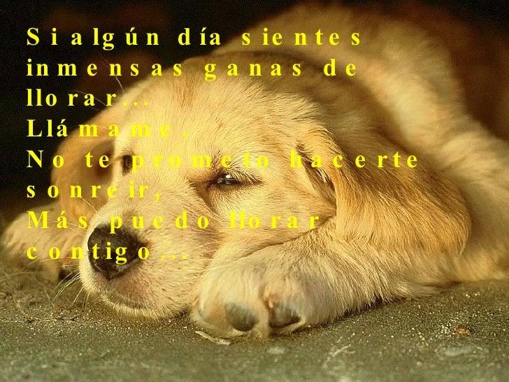 Si algún día sientes inmensas ganas de llorar...  Llámame.  No te prometo hacerte sonreir,  Más puedo llorar contigo...