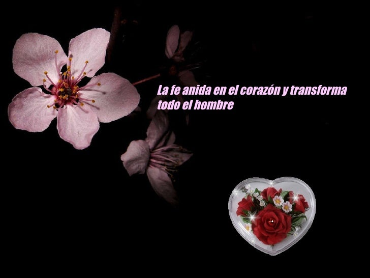 La fe anida en el corazón y transforma todo el hombre