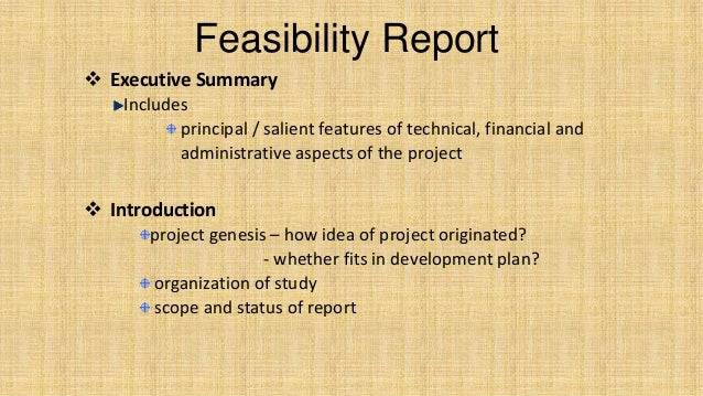 how to write an introduction for a feasibility report