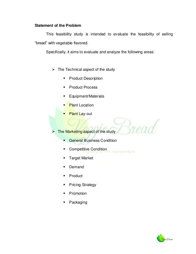 how to write a feasibility study pdf