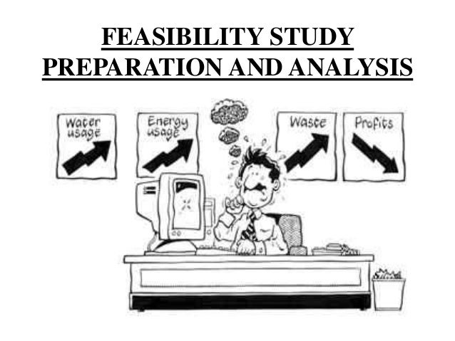 project fisibility study essay