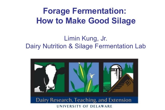 Forage Fermentation: How to Make Good Silage Limin Kung, Jr. Dairy Nutrition & Silage Fermentation Lab