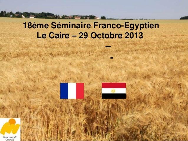 18ème Séminaire Franco-Egyptien Le Caire – 29 Octobre 2013  – -  1