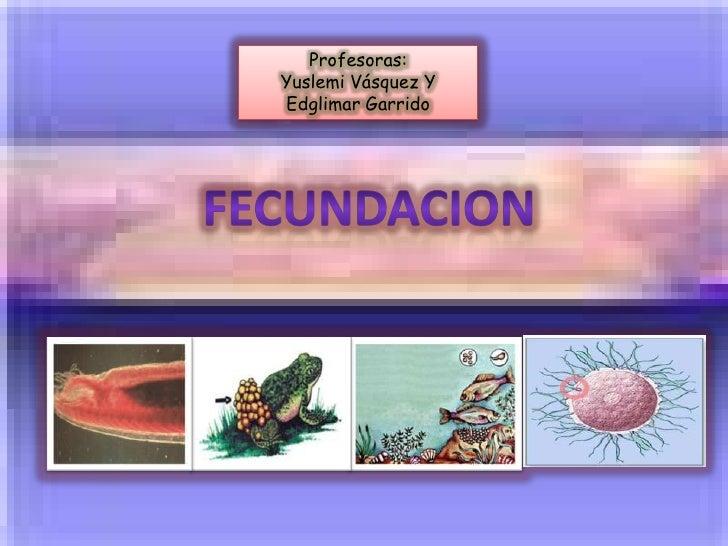 Profesoras:Yuslemi Vásquez YEdglimar Garrido