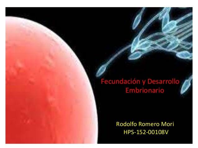 Fecundación y Desarrollo Embrionario Rodolfo Romero Mori HPS-152-00108V