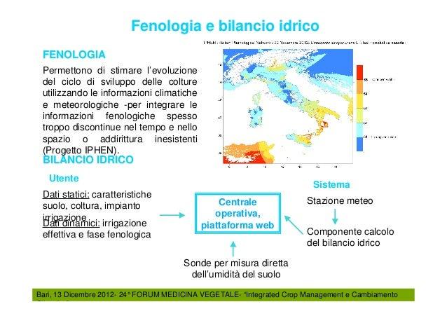 Federico spanna fmv 2012 for Calcolo impianto irrigazione