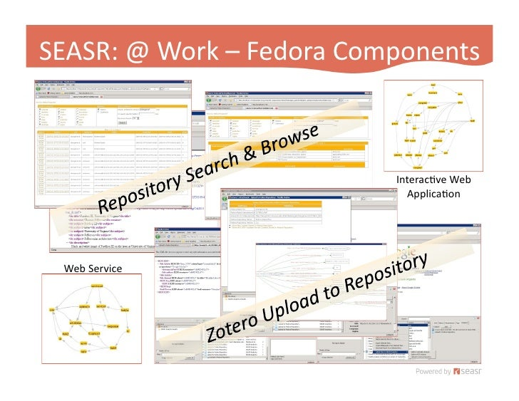 SEASR: