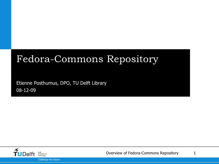 Fedora-Commons Repository <ul><li>A brief overview </li></ul>Etienne Posthumus, DPO, TU Delft Library 08-06-09